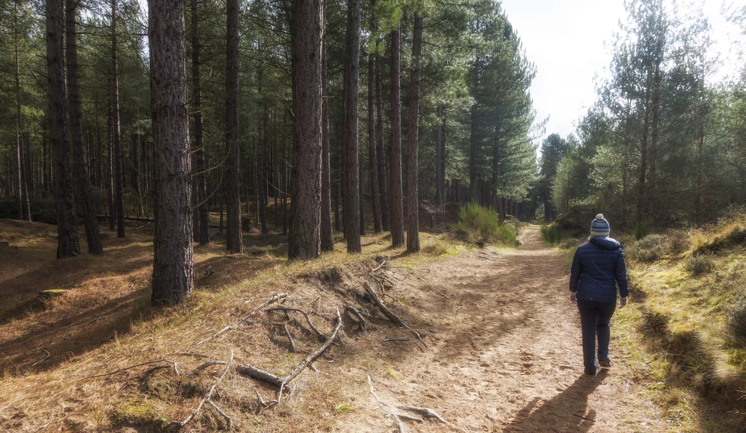 Larick Campsite - History and Culture - tentsmuir walk 1